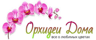OrhideiDoma.ru