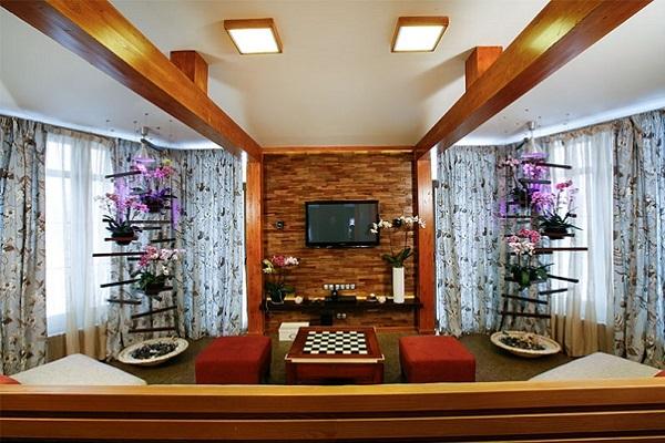 Вертикальное расположение коллекции орхидных
