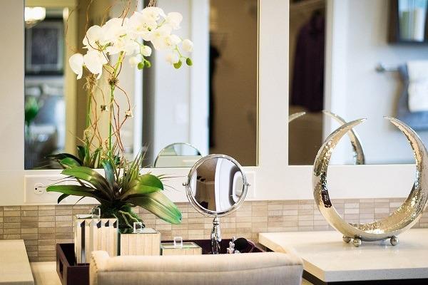 Белая орхидея - украшение любого интерьера