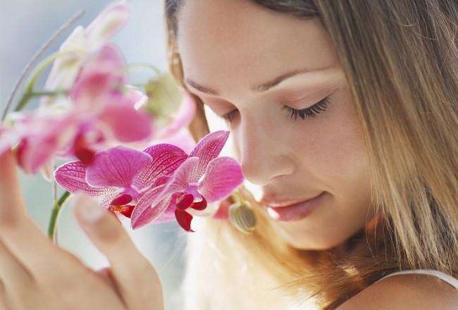 Запах орхидеи