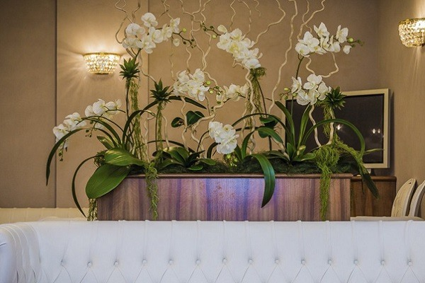 Высокие белые орхидеи в интерьере