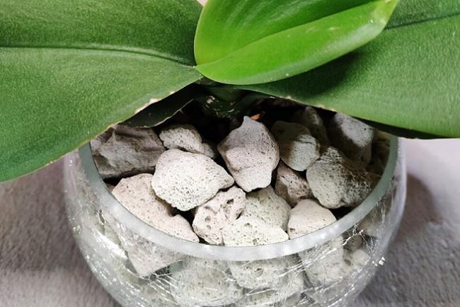 Пеностекло для орхидеи