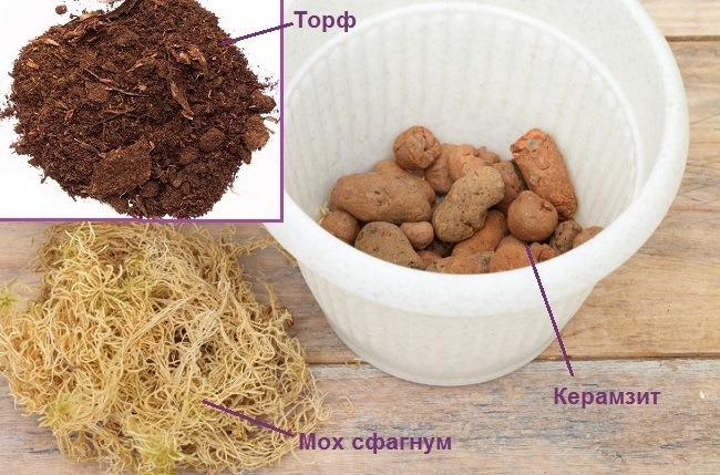 Торф, мох сфагнум и керамзит