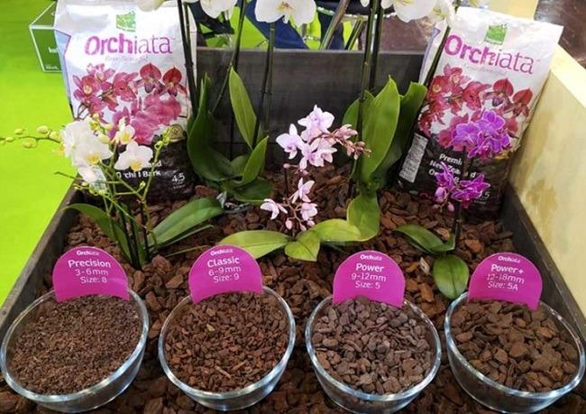 Субстрат орхиата для орхидей