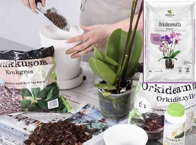 Кора Кеккила для орхидей